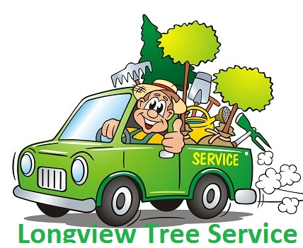 Longview Tree Services | Tree Removal & Trimming Care Longview TX